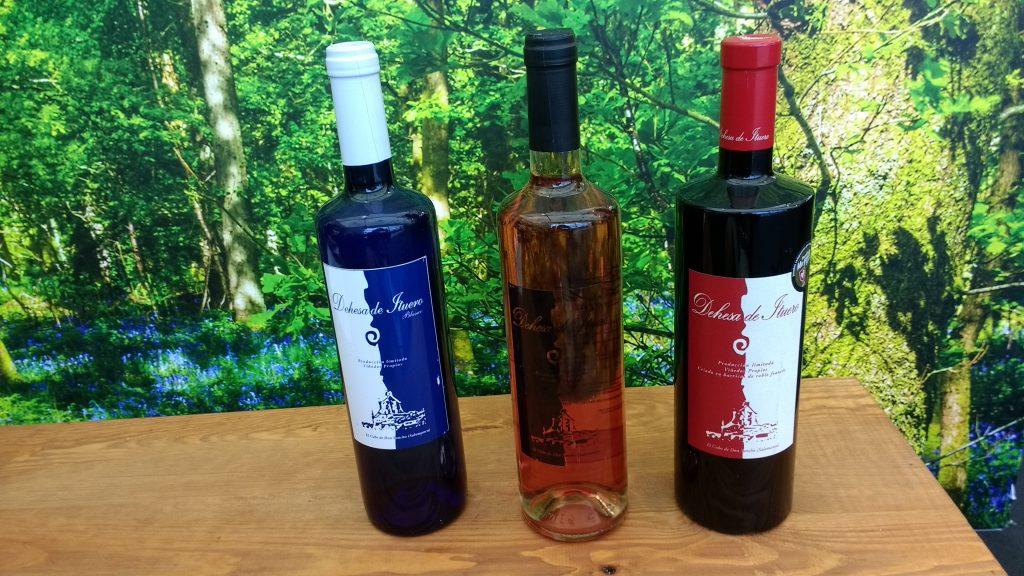 spanish.-wines-campo-charro- Dehesa-de-Ituero